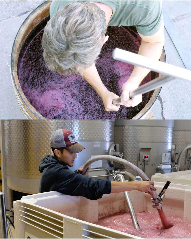 Zgniatanie winogron